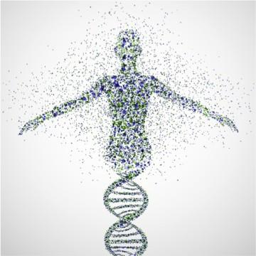 ANGI DNA ImageChirality